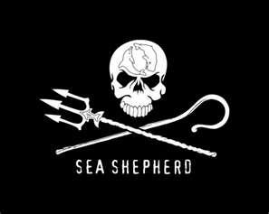 Please support captain paul watson and demand a release now