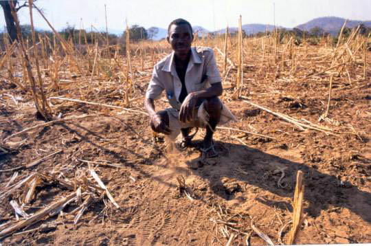 farm&climate&poor&africa&HIV
