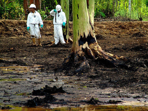 Ecuador-Rainforest-Oil-Contamination