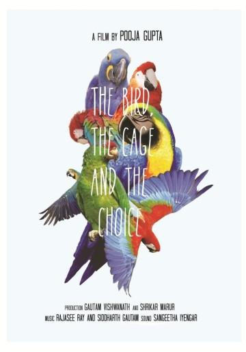 thbird