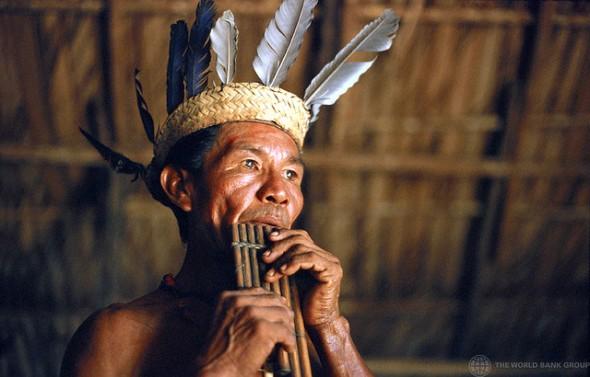 tribe5
