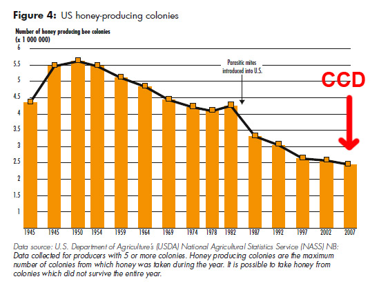 US_bee_decline1