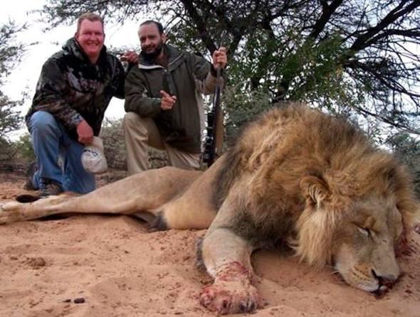 lionhunt