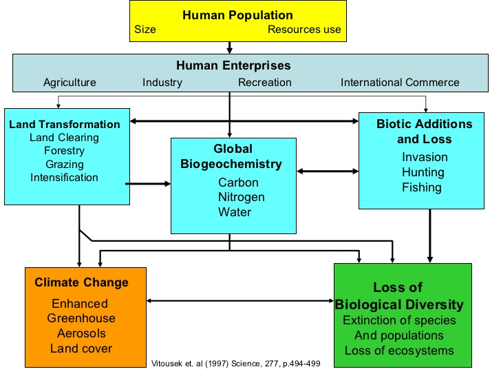 relationship between population agriculture and environment