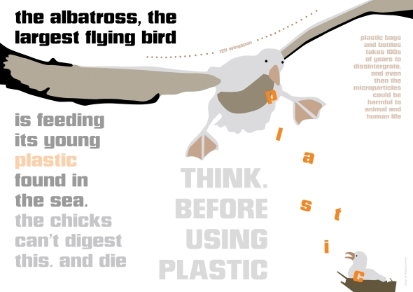 albatross_lowres