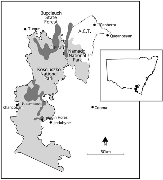 Location map for  Corroboree Frogs.