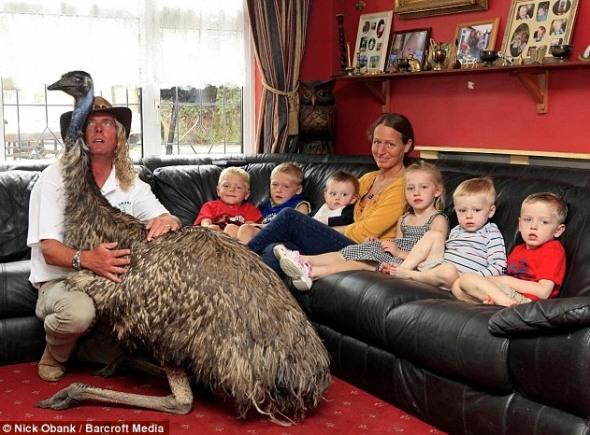 """Hand reared Emu """"Beaky."""""""