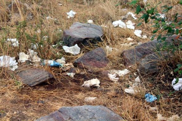 Litter on the Masai Mara wildlife reserve.