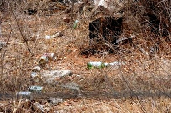 Litter in the Kruger National Park.