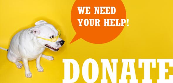 donate5