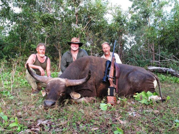 Banteng-Hunting - Click to view more.