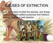 September 2015 speaks for the voiceless international animal