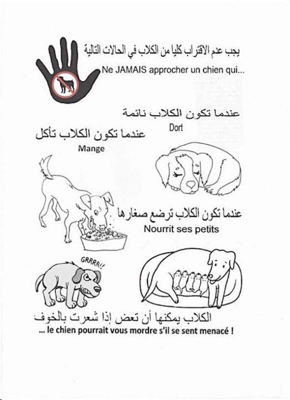 rabies_info-600